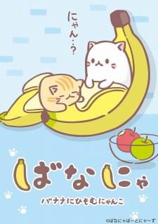 Capitulos de: Bananya