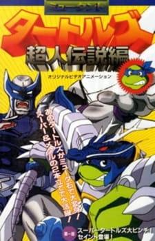 Mutant Ninja Turtles: Superman Legend