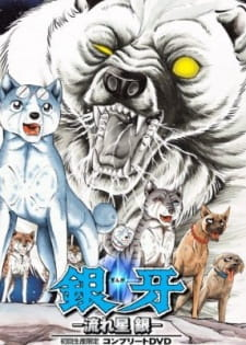 Ginga Nagareboshi Gin- Ginga: Nagareboshi Gin, Silverfang, Silver Fang, The Small Hero. Birth Of Gin