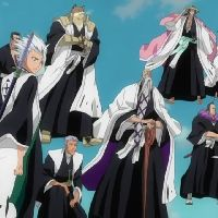 Captains of the Gotei 13: Bleach