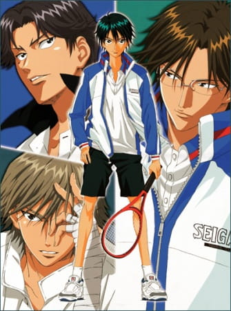 Prince of Tennis: National Championship Chapter, Prince of Tennis: National Championship Chapter,  PoT OVA, Tennis no Ouji-sama: Zenkoku Taikai hen, Prince of Tennis: The National Tournament,  テニスの王子様 Original Video Animation 全国大会編