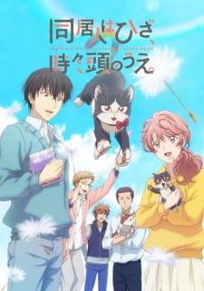 Doukyonin wa Hiza, Tokidoki, Atama no Ue  (My Roommate is a Cat