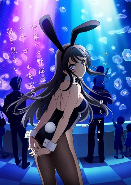 Image result for bunny girl senpai