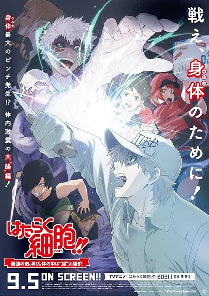 """Cover """"Hataraku Saibou!!"""" Saikyou no Teki, Futatabi. Karada no Naka wa """"Chou"""" Oosawagi!"""