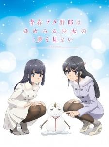 Seishun Buta Yarou wa Yumemiru Shoujo no Yume wo Minai picture