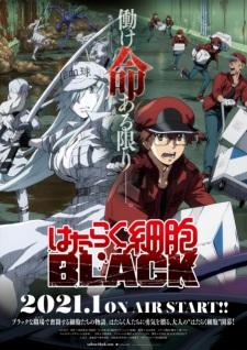 Hataraku Saibou Black (TV)Thumbnail 2
