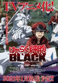 Hataraku Saibou Black (TV)Thumbnail 1