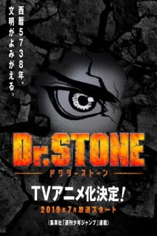 Dr. Stone picture