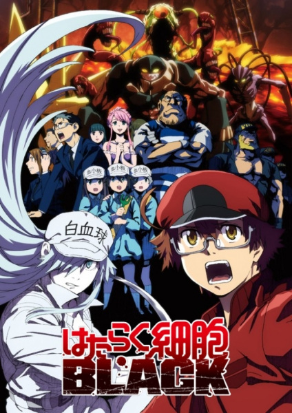 Hataraku Saibou Black (TV) Anime Cover
