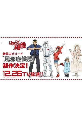 Cells at Work Special, Cells at Work Special,  Hataraku Saibou Special, Hataraku Saibou: Cold Syndrome,  はたらく細胞 新作エピソード「風邪症候群」