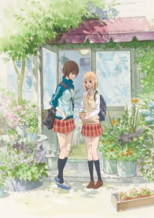Nonton Asagao to Kase-san. OVA  Subtitle Indonesia Streaming Gratis Online