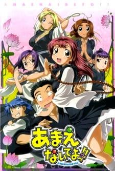 Amaenaide yo!! Katsu!!: Damasarenaide yo!!