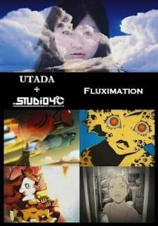 Fluximation
