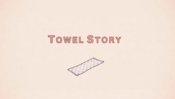 Towel Story