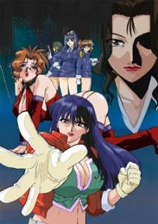 Shin-ban Megami Tantei Vinus File