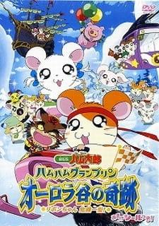 Tottoko Hamtarou Movie 3: Ham Ham Grand Prix Aurora Tani no Kiseki - Ribon-chan Kiki Ippatsu!
