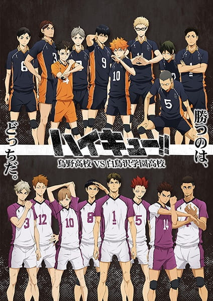 Haikyu!! 3rd Season, Haikyu!! 3rd Season,  Haikyuu!! Third Season, Haikyuu!! Karasuno High VS Shiratorizawa Academy,  ハイキュー!! 烏野高校 VS 白鳥沢学園高校