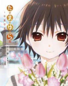Tamayura: Sotsugyou Shashin Part 1 - Kizashi picture