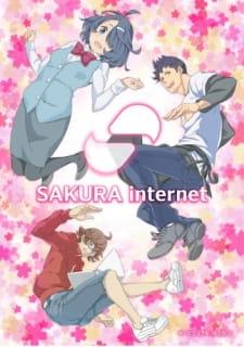 Sakura Internet Myanimelist Net