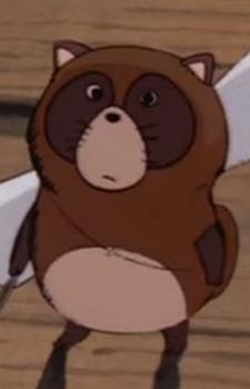 Child Tanuki