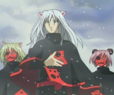 Kinka Knights