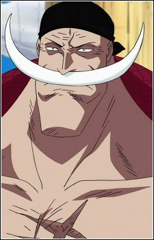 100236 - One Piece 480p Eng Sub