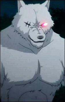 Wildman, Lobo