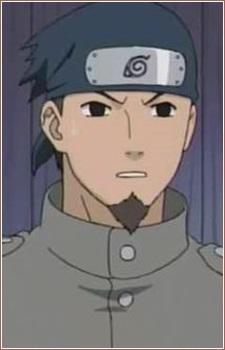 Tatami, Iwashi