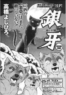 Ginga Nagareboshi Gin - Special Chapter
