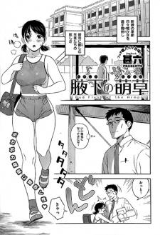 Wakishita no Moekusa
