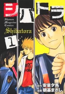 Shibatora