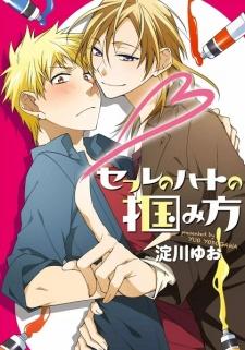 Sex Friend no Heart no Tsukamikata