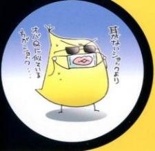 Misasagi, Fuhri