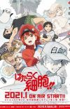 Second Season of 'Hataraku Saibou' Premieres in January 2021