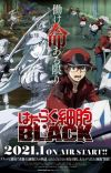 'Hataraku Saibou Black' Spin-off Gets TV Anime in January 2021
