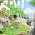 'Peleliu: Rakuen no Guernica' Manga Ends, Receives Anime Adaptation