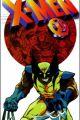 X-Men: The Manga