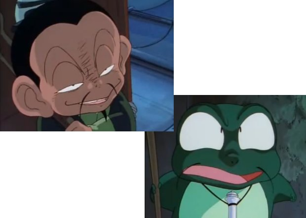 Ranma 1/2 Frog Hermit Before and afte