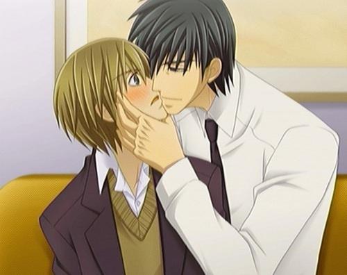 Junjou Romantica 3 Miyagi & Shinobu
