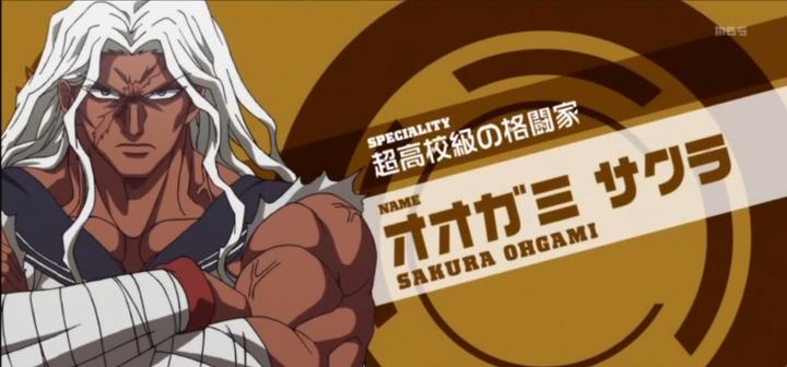 Danganronpa: The Animation Sakura Ogami