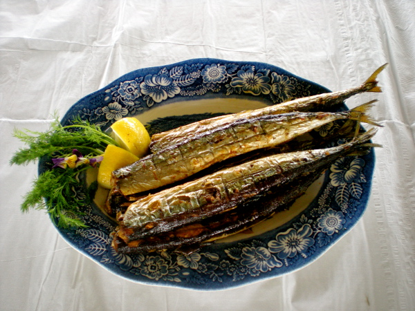 Autumn Japanese Foods Pacific Saury