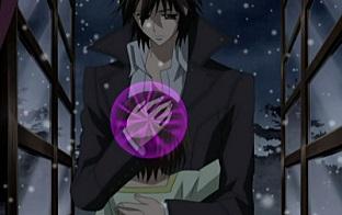 Vampire Knight Pureblood Kaname and Yuuki