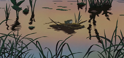 Grave of the Fireflies Frog