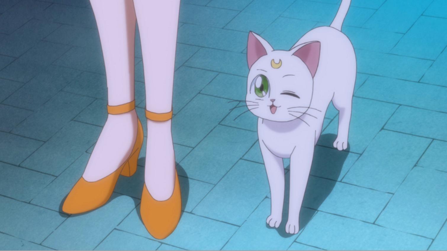 The Loyal Cats of Sailor Moon Crystal - MyAnimeList net