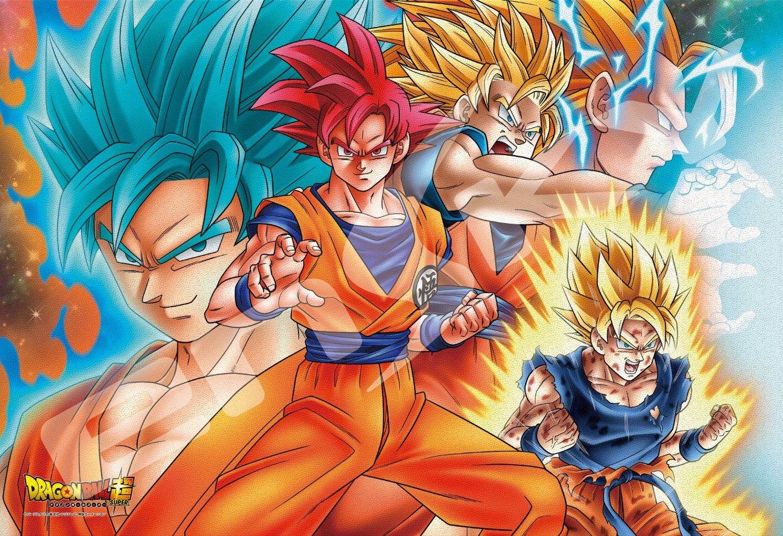 Dragon Ball Super Shinka