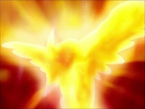 Pokemon XY_Fletchling evolves