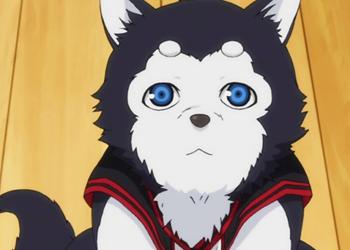 Anime mascots - Tetsu #2 - Kuroko no Basket