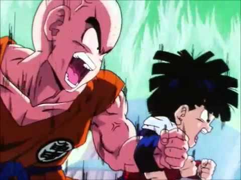 Dragon Ball Z Gohan and Krillin