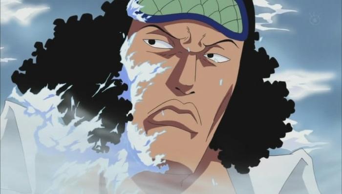 One Piece Kuzan Aokiji