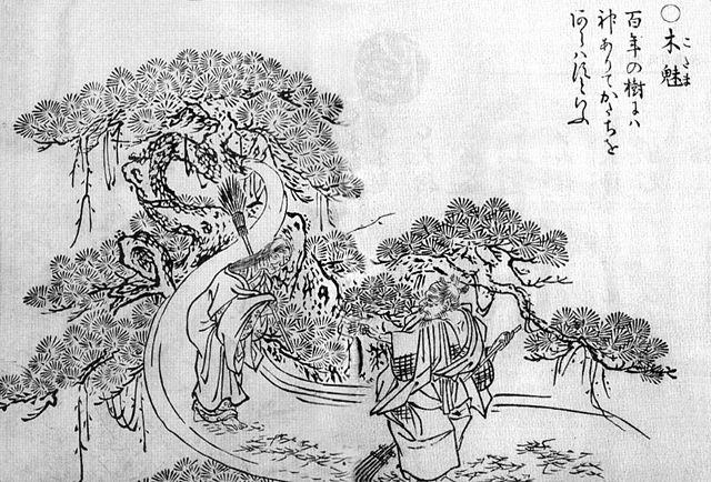 Mononoke Hime Sekien's Kodama